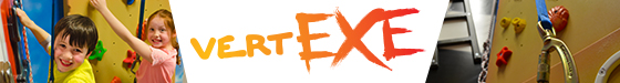 Vertexe Participation Statement Logo